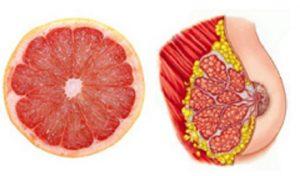 11 foods-grep