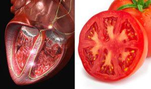 11 foods-srdce